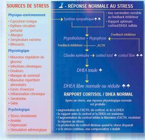 combattre le stress chronique